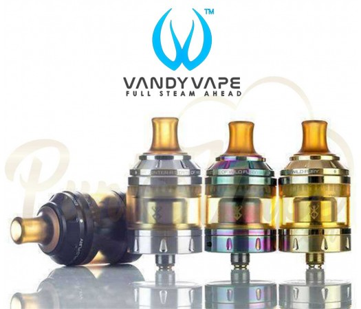 VandyBerseker-1-525x450.jpg