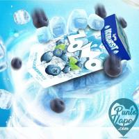 Zomo - ICE Arandanos